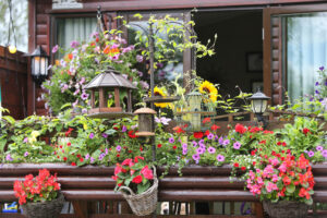flowers and bird feeder outside holiday home