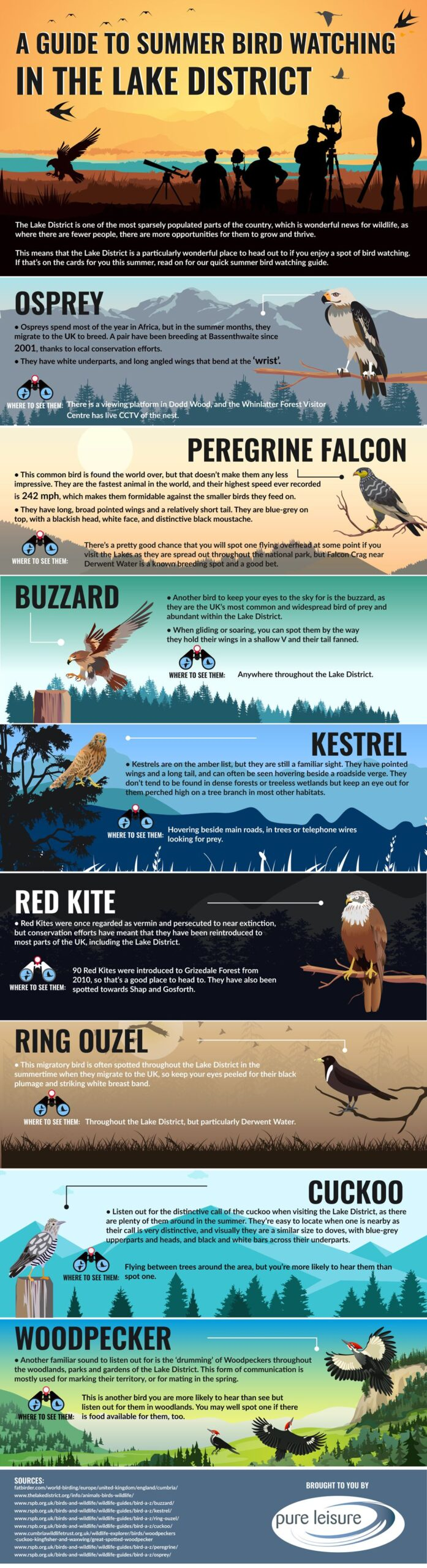 Lake District Bird Watching, an infographic by Pure Leisure